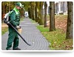 worker with leafblower